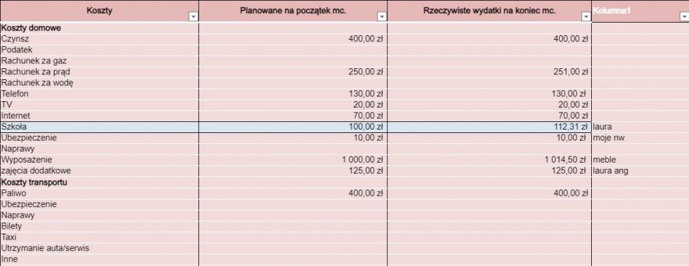 Raport z mojego budżetu domowego