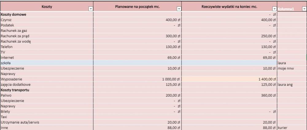 Raport budżet domowy grudzień