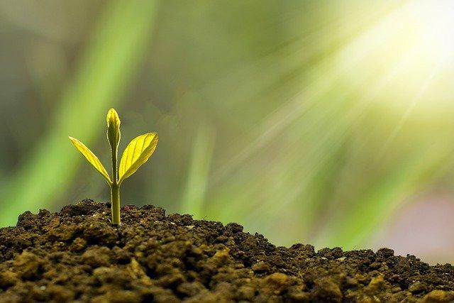 subfundusz Generali Akcji Ekologicznych